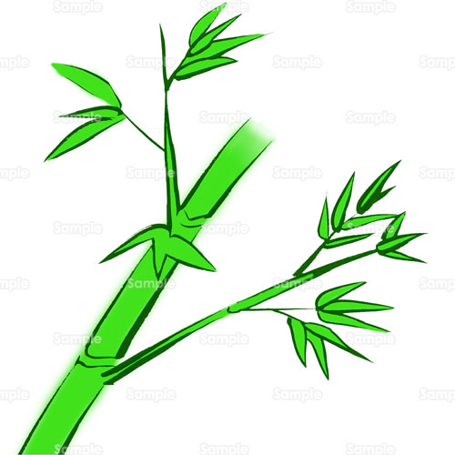竹,タケ,木,のイラスト(094_0194 ... : 七夕の飾り : 七夕