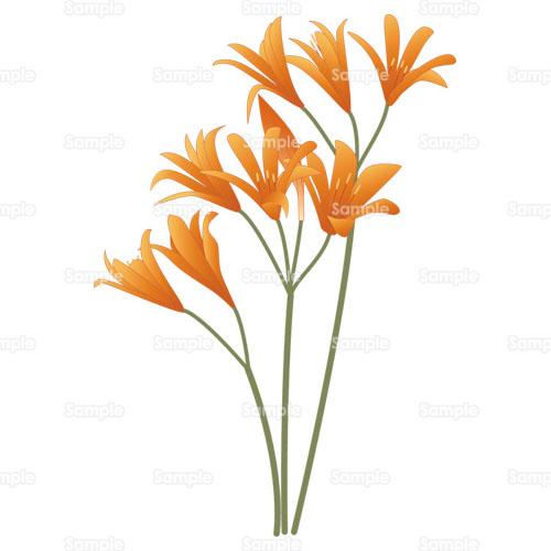 山野草 キツネノカミソリ ヒガンバナ ユリ 花 ダウンロード 花のイラスト素材集 花 はな スクウェア 105 0408