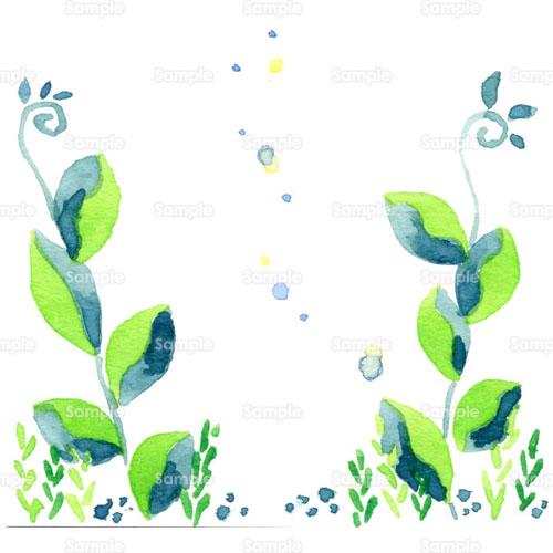 花デフォルメ蔓つるつる草のイラスト0580006 クリエーターズ