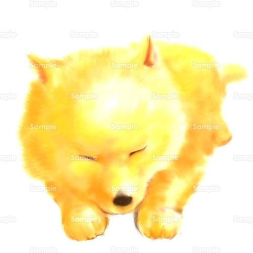 いぬ日本犬犬のイラスト0720008 クリエーターズスクウェア