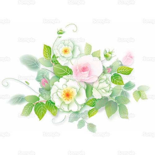 薔薇バラ野ばら花のイラスト0730024 クリエーターズスクウェア