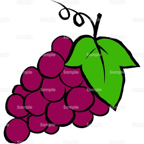 ぶどう葡萄果物フルーツグレープのイラスト0940419