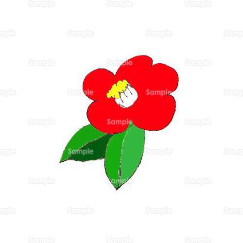 椿つばき花のイラスト1030012 クリエーターズスクウェア