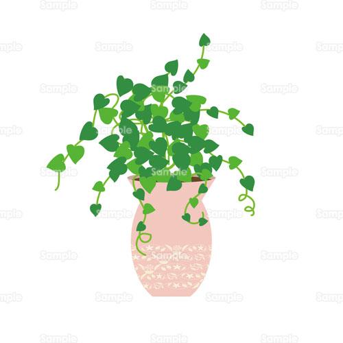 アイビー蔦ツタ観葉植物のイラスト1050326 クリエーターズ