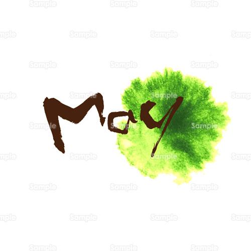 May5月花のイラスト1900005 クリエーターズスクウェア