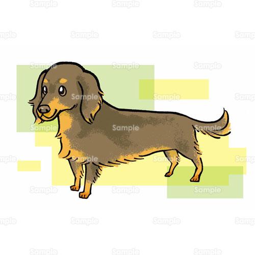 ダックスフンドdachshundイヌ犬のイラスト1950002 クリエーター