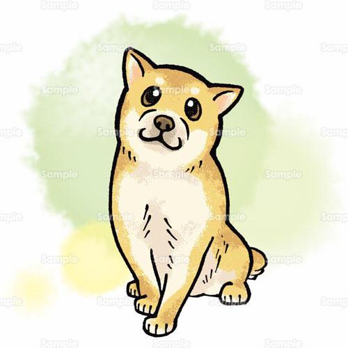 イヌ柴犬子犬マメシバ仔犬犬小イヌ仔イヌこいぬのイラスト