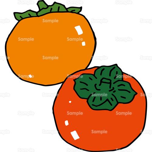 柿カキ果物フルーツのイラスト2240005 クリエーターズスクウェア