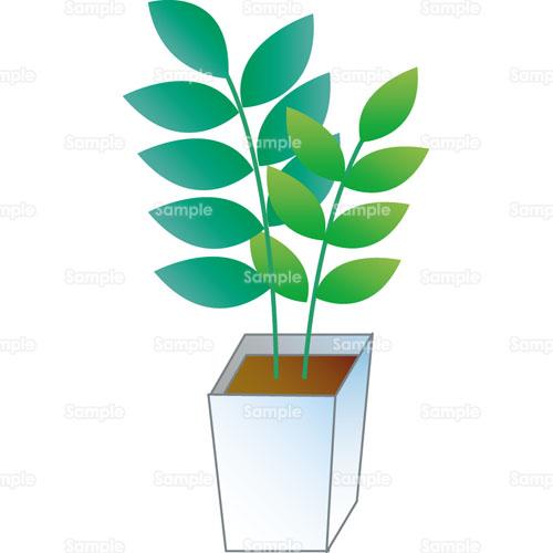 観葉植物鉢植えのイラスト2370003 クリエーターズスクウェア