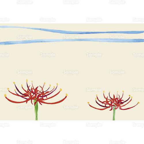 彼岸花 ヒガンバナ 曼珠沙華 マンジュシャゲ 花 のイラスト 241 0072 クリエーターズスクウェア