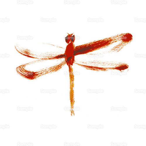 赤とんぼトンボ昆虫ムシ蜻蛉のイラスト2640012 クリエーターズ